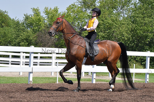 36B. Academy Equitation WT 9 & 10 Yrs.