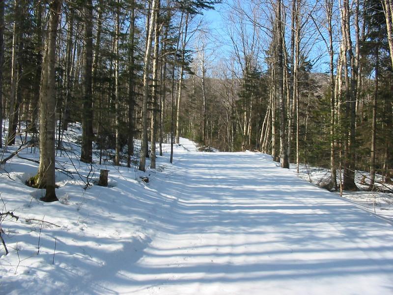 Ski trail #11