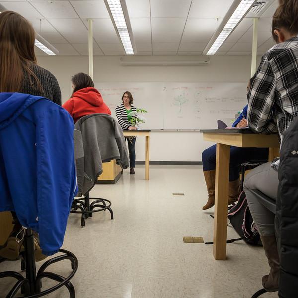 Alyssa Hakes Classroom-6.jpg