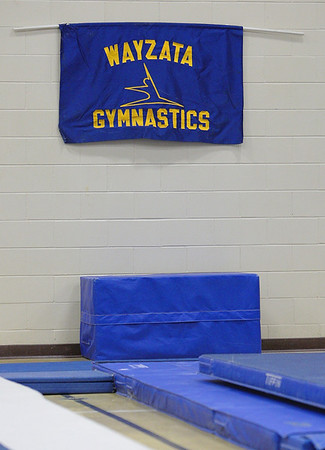 03 Dec Gymnastics