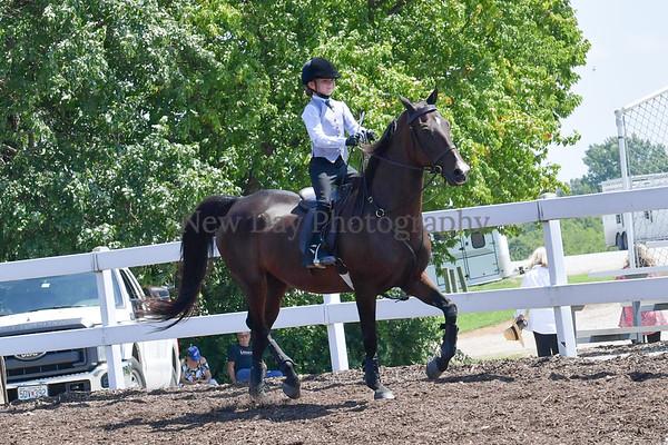 38.  Academy Equitation WT 8 & Under