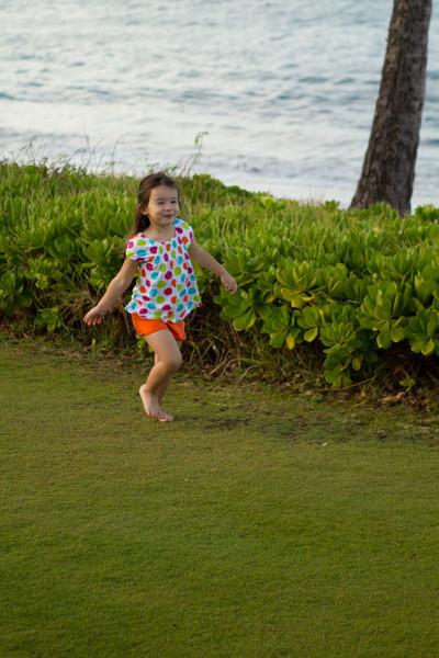 Hawaii2012-1805.jpg