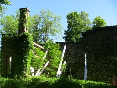 Colden Mansion Ruins