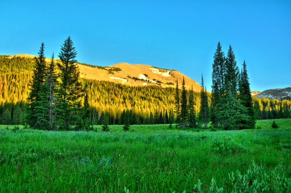 Phelps Lake to Granite Canyon to Middle Fork 7/25/14