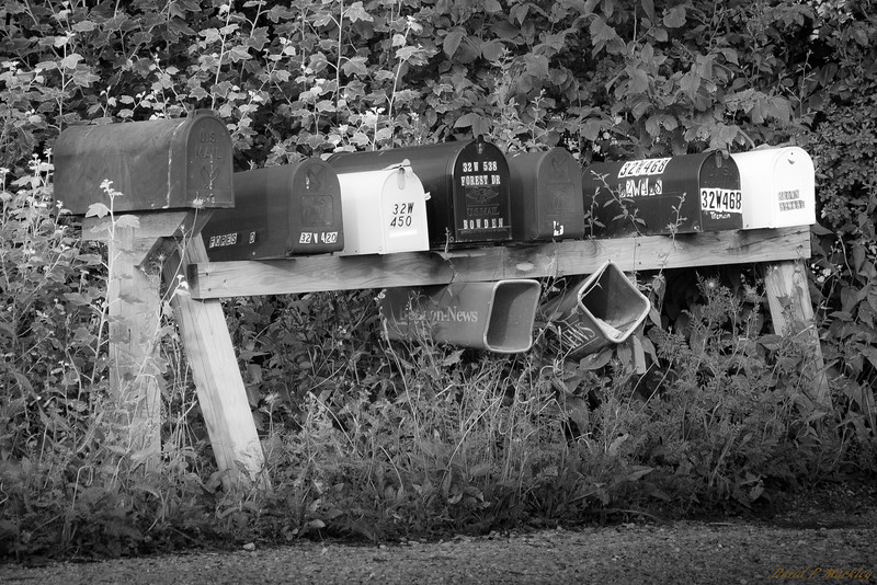 Mail Confusion