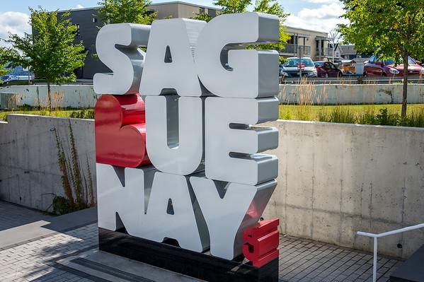 Norwegian Dawn - Saguenay