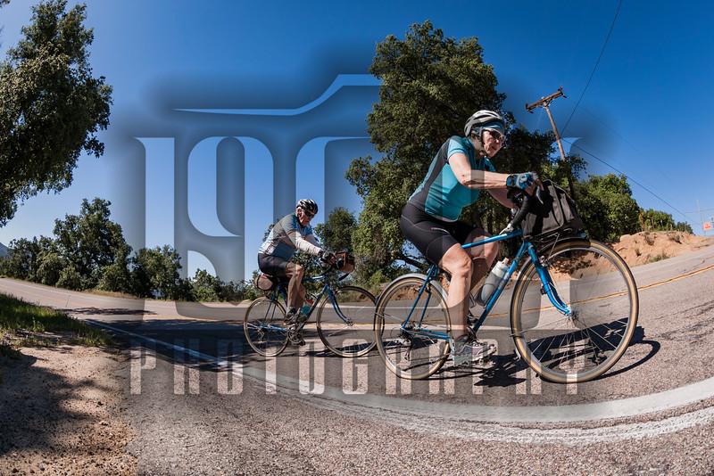 20160402_Palomar Mountain_1291.jpg