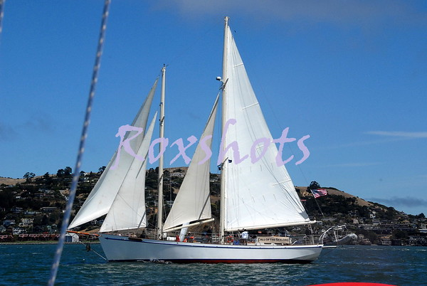 SFYC Sail Boat Racing