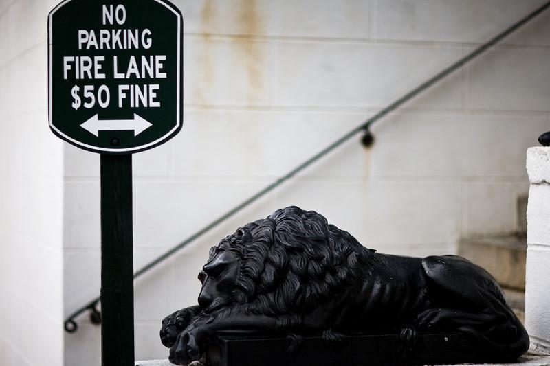 Beware_the_Parking_Lions.jpg