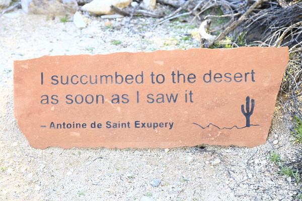 Tohono Chul, Tucson, AZ  02/2016