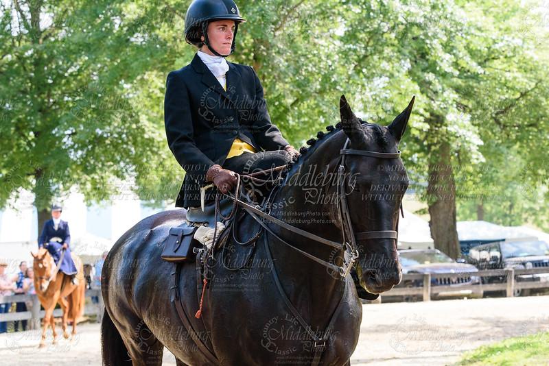 Ladies Side Saddle U/S