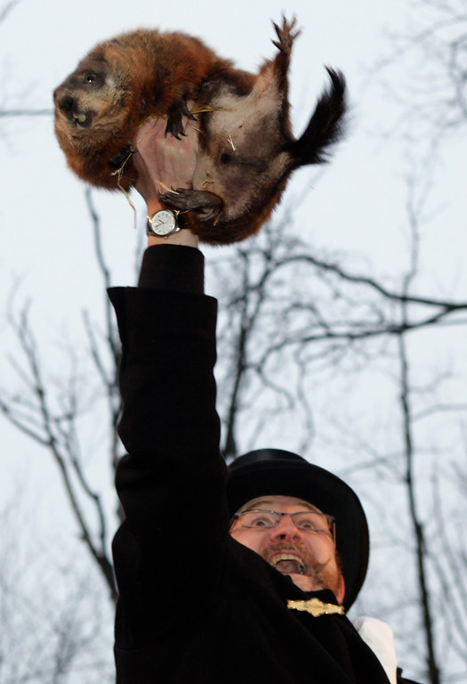 . Ben Hughes, handler of the weather-predicting groundhog Punxsutawney Phil, holds Phil in the air after removing him from his stump at Gobbler\'s Knob on Groundhog Day, Monday, Feb. 2, 2009, in Punxsutawney, Pa. The Groundhog Club said Phil saw his shadow and predicted six more weeks of winter. (AP Photo/Carolyn Kaster)