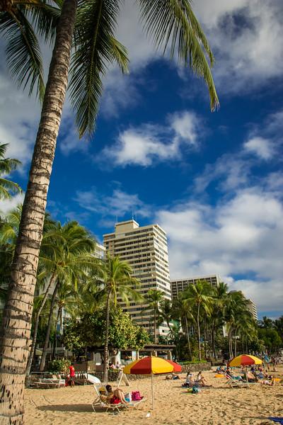 Hawaii-224.jpg