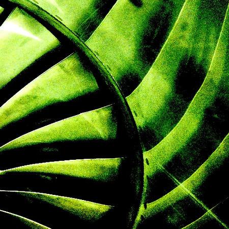 DSC05460 Crop Emerald.jpg