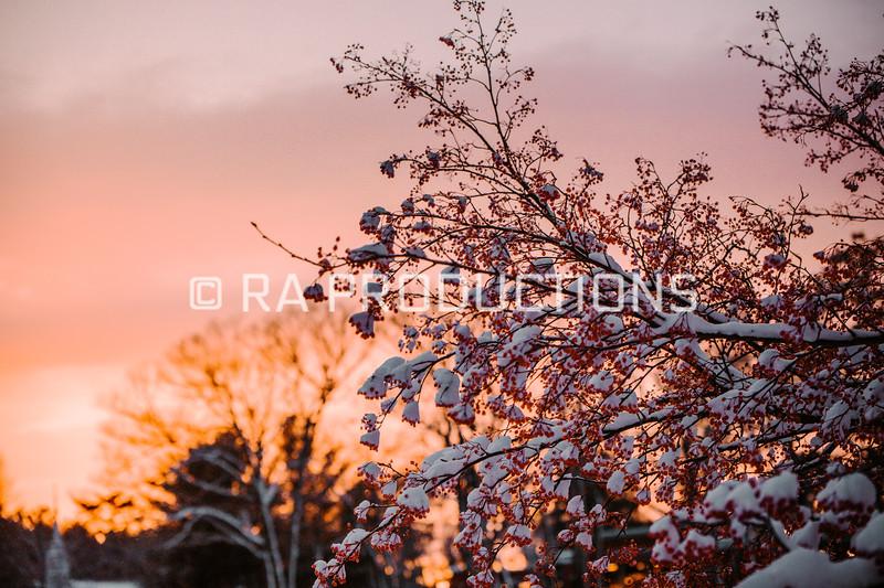 12022019_RAC_SnowDaySunset-33.jpg