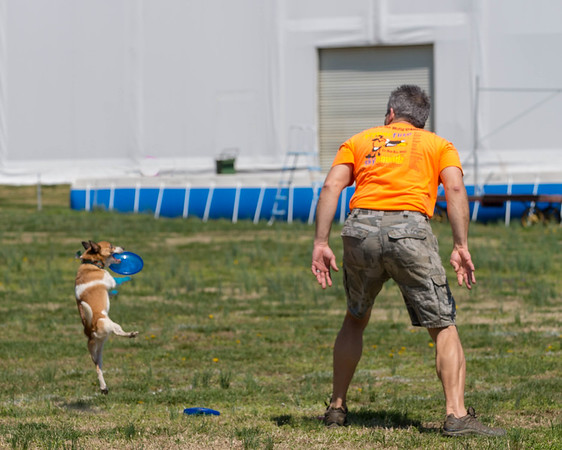 MAD Dogs Discdogathon April 14, 2018