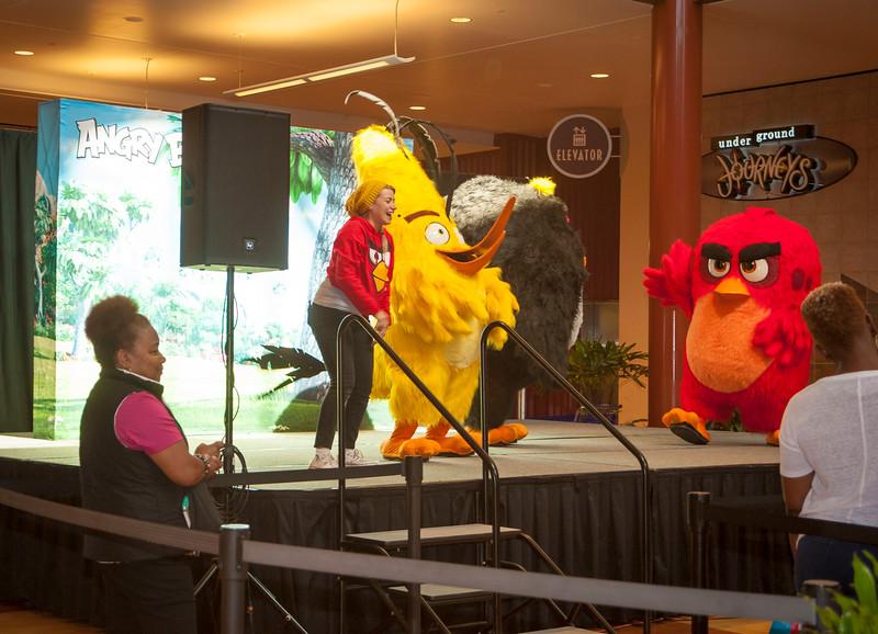 Angry Birds StoneCrest Mall 45.jpg