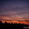 Sunset_071720-027
