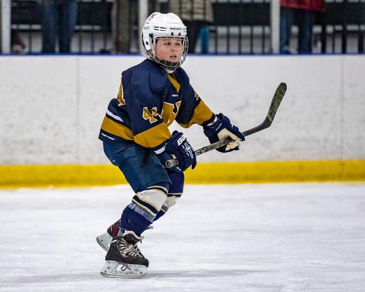 2019-02-03-Ryan-Naughton-Hockey-10.jpg