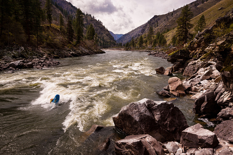 Jesse Murphy surfing Golds Hole on the Main Salmon River in Idaho.