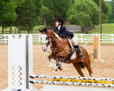 Short Stirrup & Beginner Rider Over Fences