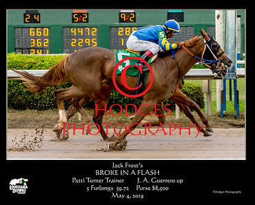 Louisiana Downs 2019 Thoroughbred