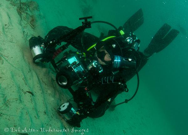 Mark Farrer photographing a Hypselodoris obscura nudibranch