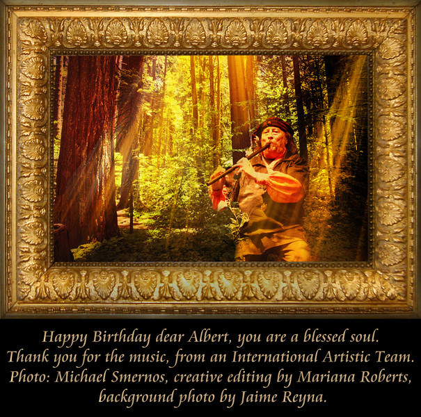 albert - birthday gift #8 (A).jpg
