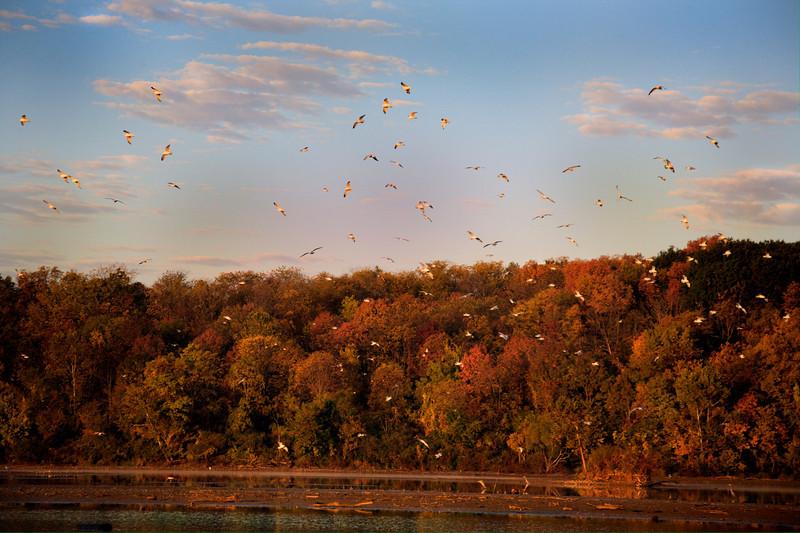 fall landscape.jpg
