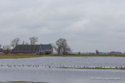 Noorderhoogebrug Koningslaagte Groningen