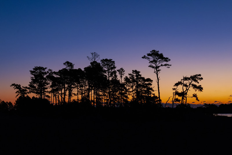 Chincoteague Sunrise 20.jpg