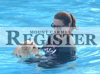 2015 - Mount Carmel Doggy Swim