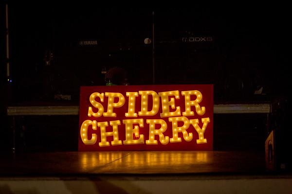 Spider Cherry 1/24/20