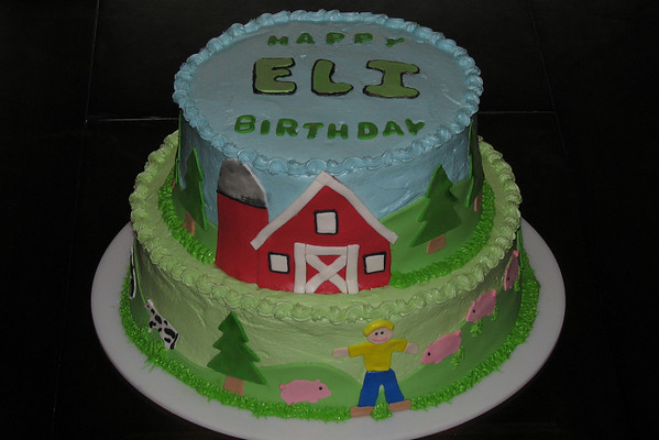 Eli's First Birthday Party