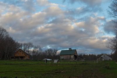 Evening Song Farm 2014