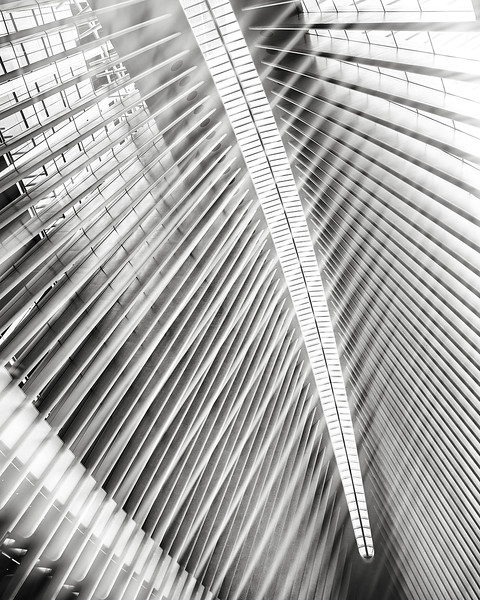 World Trade Center oculus, double exposure