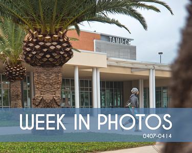Week In Photos 0407 - 0414