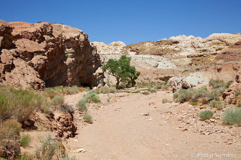 The hike starts in a wide wash in desolate country