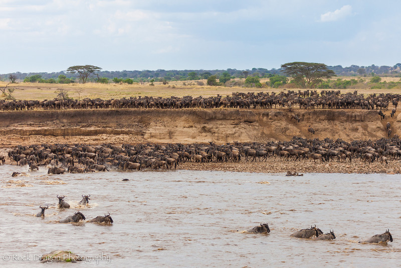 North_Serengeti-56.jpg