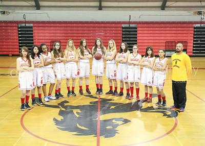 2017 Girls Basketball Team