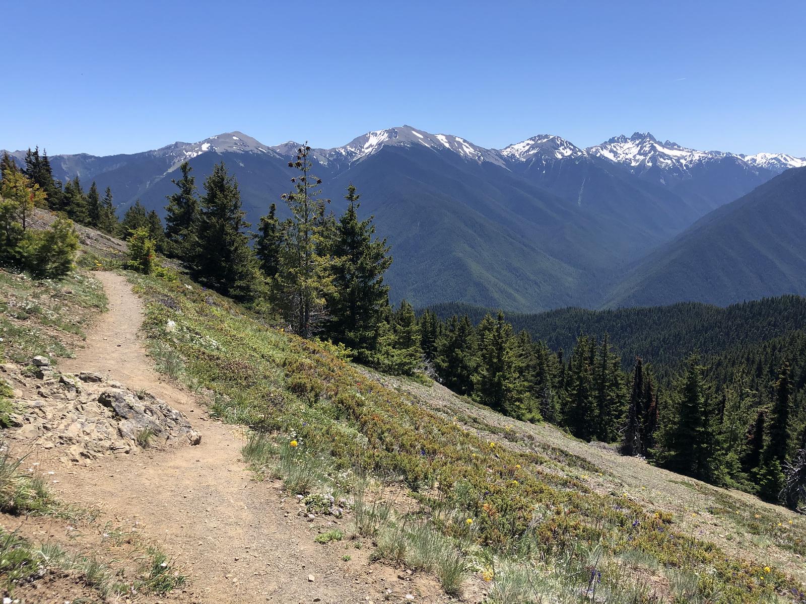 Baldy, Gray Wolf, Mount Clark