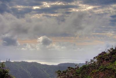 Waahila Ridge 2011