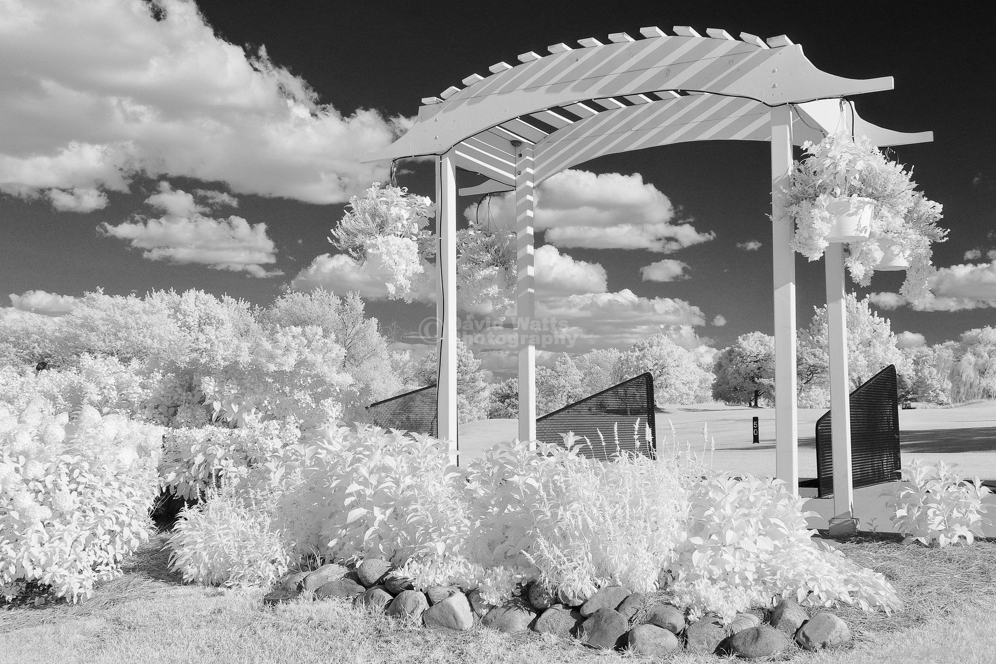 Arrowhead Golf Course in Wheaton, Infrared