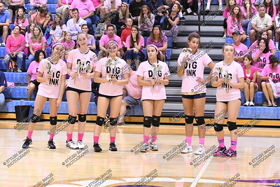 V Perk Valley - Pink Out
