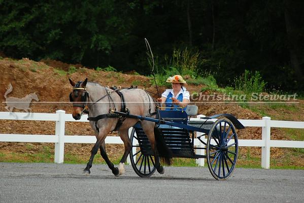 2009 Liberty United Classic Horse Show