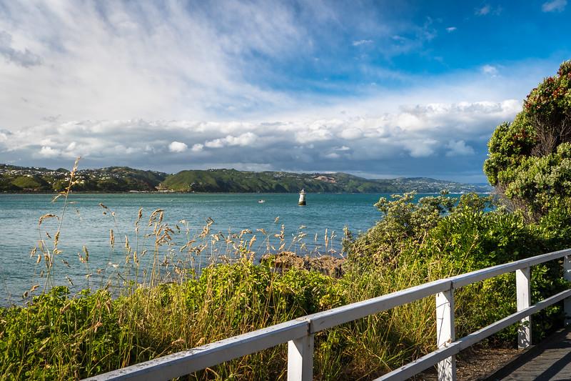New Zealand_008.jpg