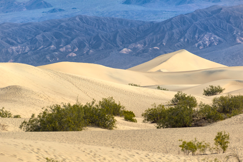 The Mesquite Flat Dunes are seen in front of towering mountains near Stovepipe Wells in Death Valley National Park
