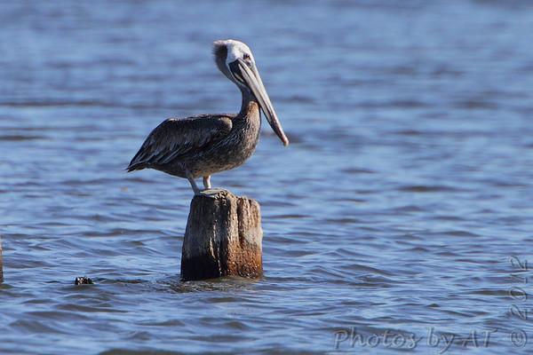 2012-09-21 Binder Lake