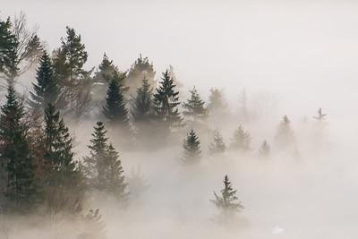 Sea of fog from Stari grad - Dec 18, 2015