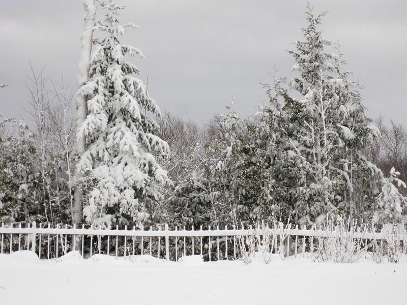 20091209_blizzard_011-10.JPG